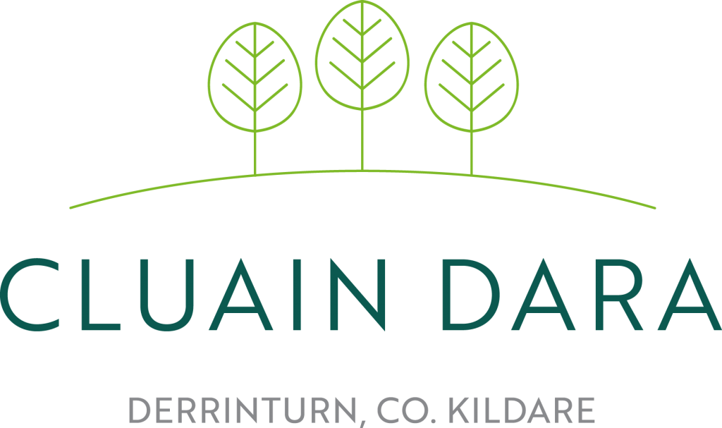 Cluain Dara development in Derrinturn Kildare
